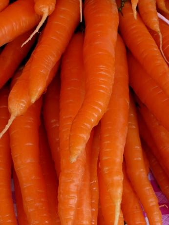 Carrots Helsinki